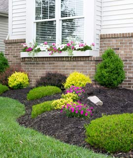 Helotes Landscaping
